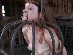 Gagged and bounded babe needs vagina pleasuring